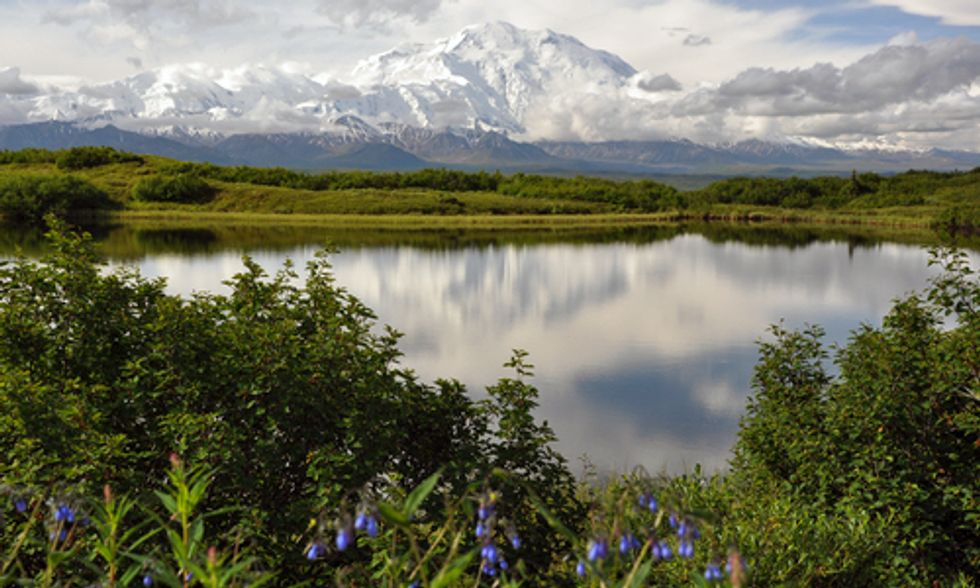 Obama Seeks Wilderness Designation for Arctic National Wildlife Refuge