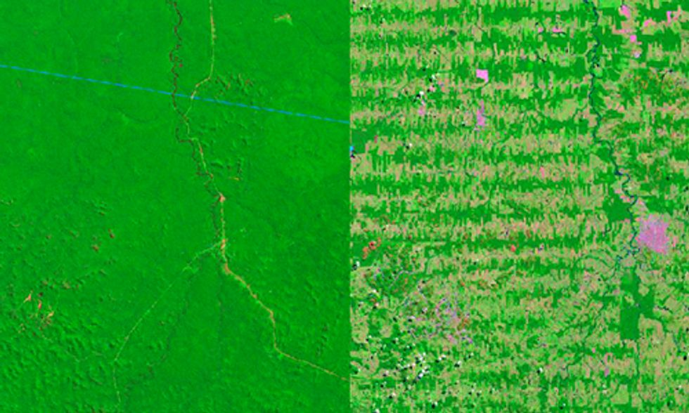 6 Striking Aerial Images Show How Deforestation Has Altered the Earth