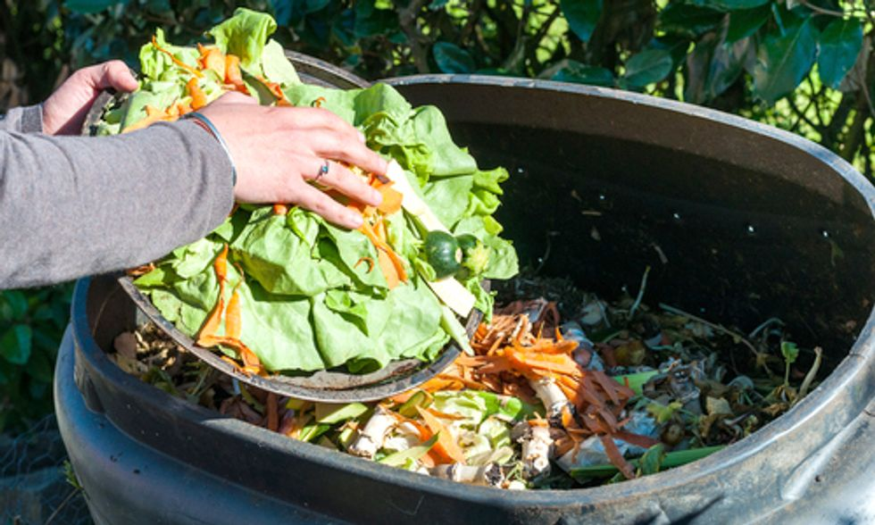 Find Out Which U.S. City Shames You Into Composting
