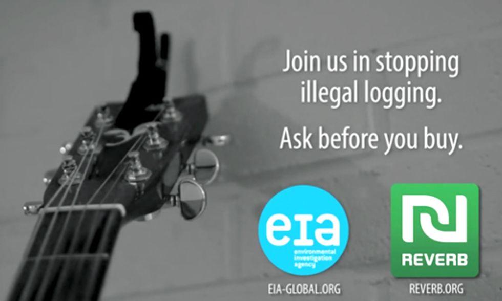 Jason Mraz, Maroon 5, Linkin Park, Guster Speak Out Against Illegal Logging