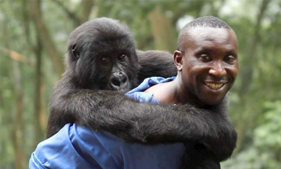 Oscar Nominated 'Virunga' Instrumental in Protecting Africa's Oldest National Park