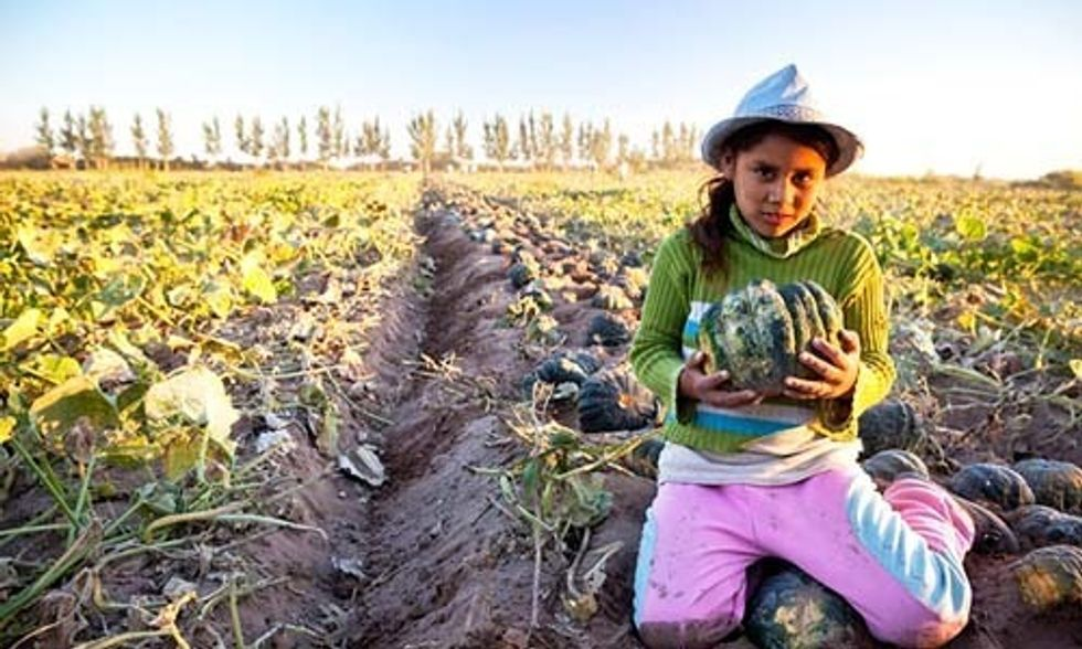 16 Reasons 2016 Will Bring Positive Change to the Global Food System