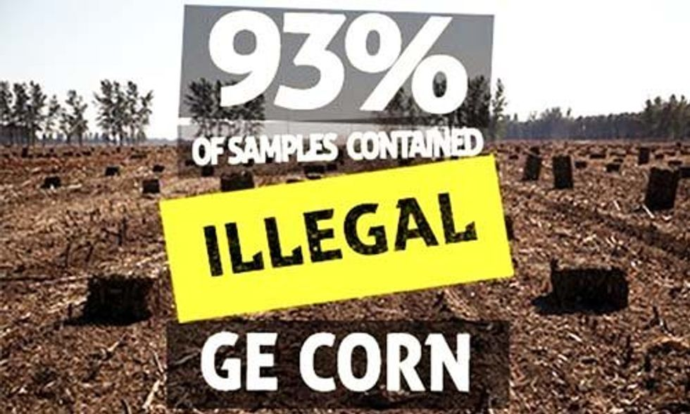 Greenpeace: Chinese Farmers Are Illegally Growing GMO Corn