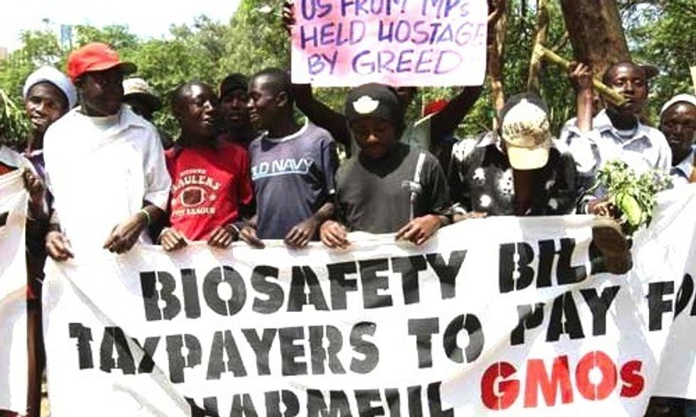 Monsanto and Gates Foundation Pressure Kenya to Lift Ban on GMOs