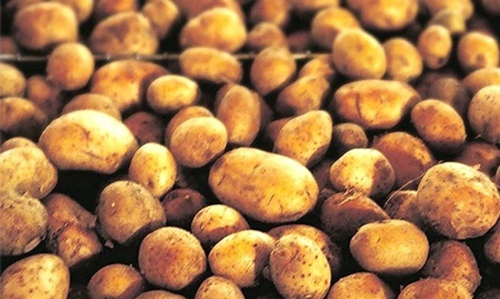 FDA Approves Genetically Engineered Potato
