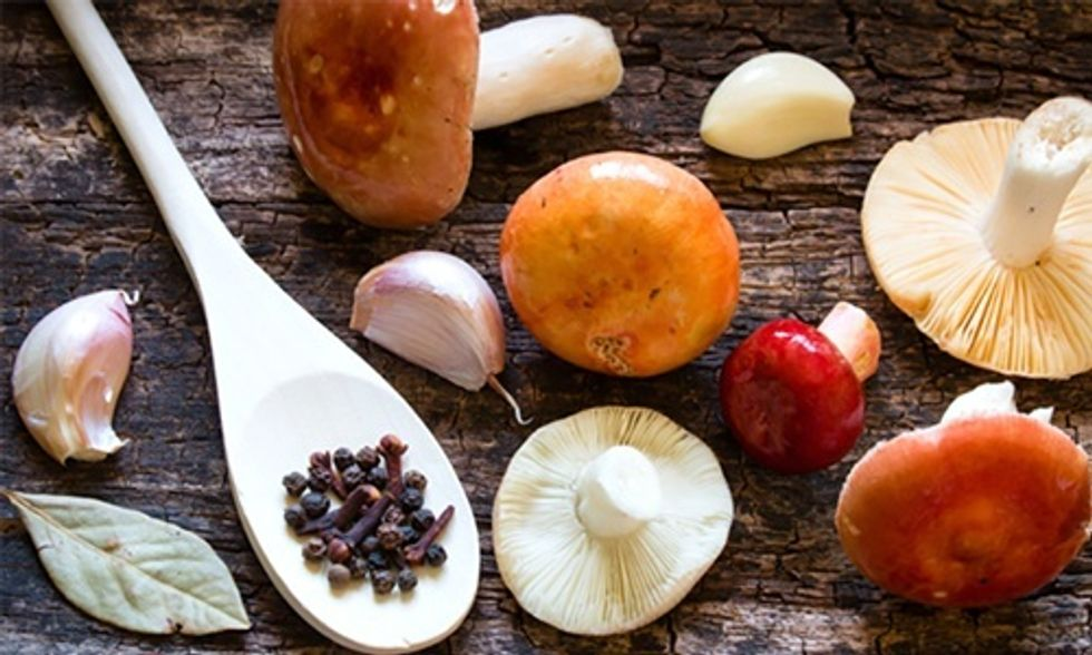 4 Reasons Why You Should Eat More Mushrooms