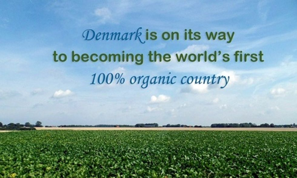 Will Denmark Become the World's First 100% Organic Country?