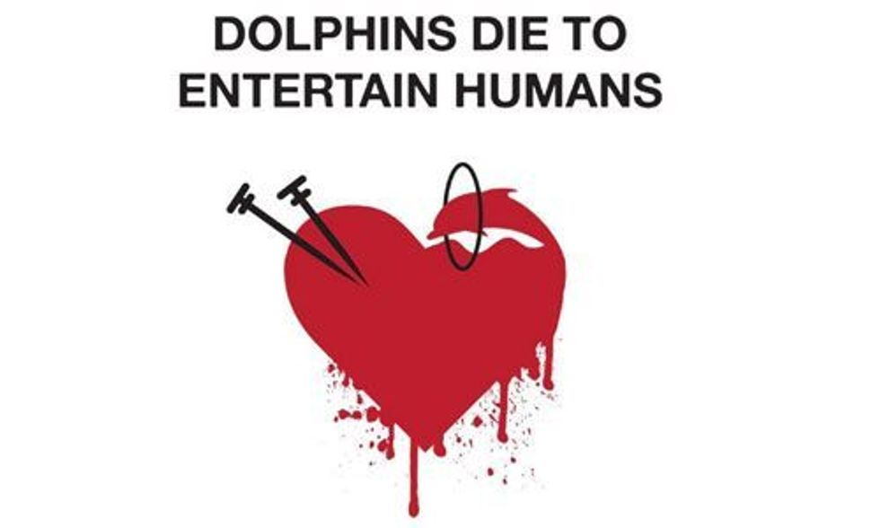 Paul Watson: Join World Love for Dolphins Day to Put an End to the Slaughter