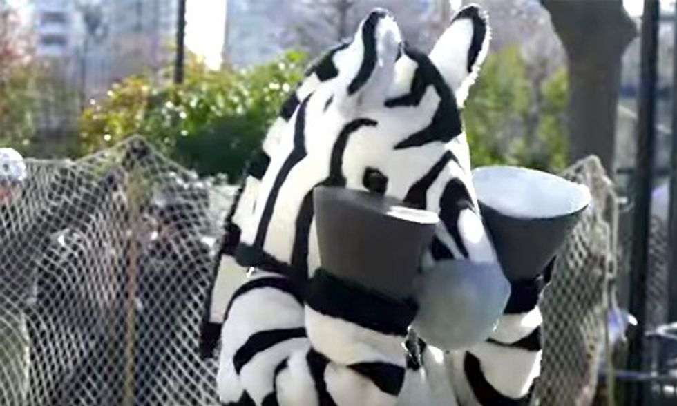 Watch This Zebra Escape From a Tokyo Zoo
