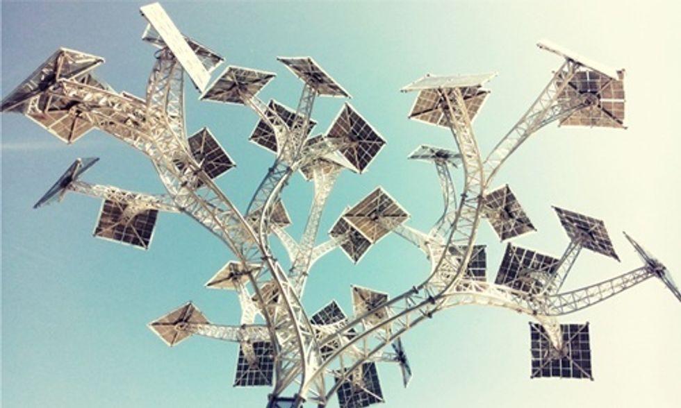 Iowa Grannies Plant Seed for Solar Tree
