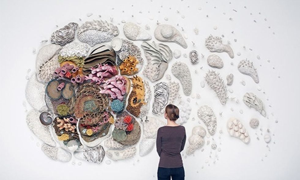 Ocean 'Artivist' Creates Breathtaking Coral Reef Sculptures