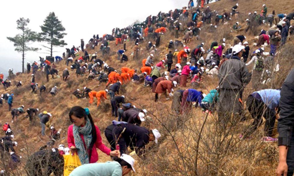 Bhutan Celebrates Birth of Prince by Planting 108,000 Trees