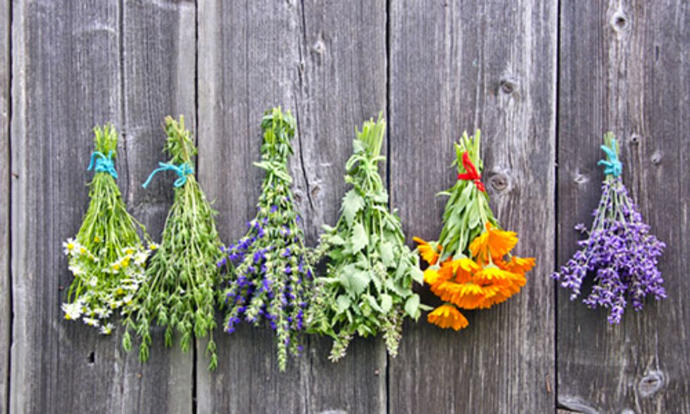 5 Health Benefits of Adding Herbs to Your Diet
