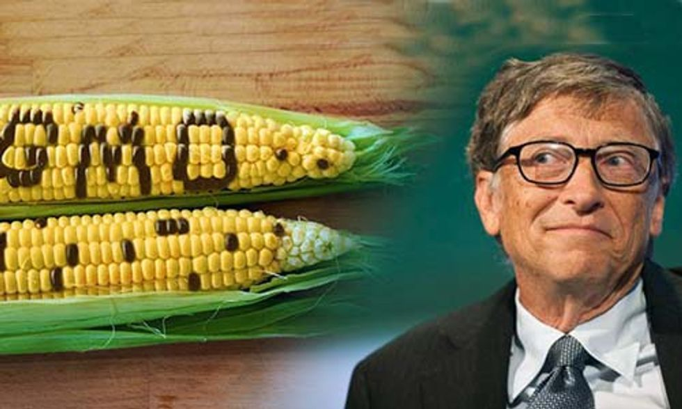 Is Bill Gates Right About GMOs?