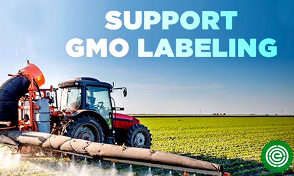 USDA Deregulates Two Lines of Genetically Engineered Corn From Monsanto, Syngenta
