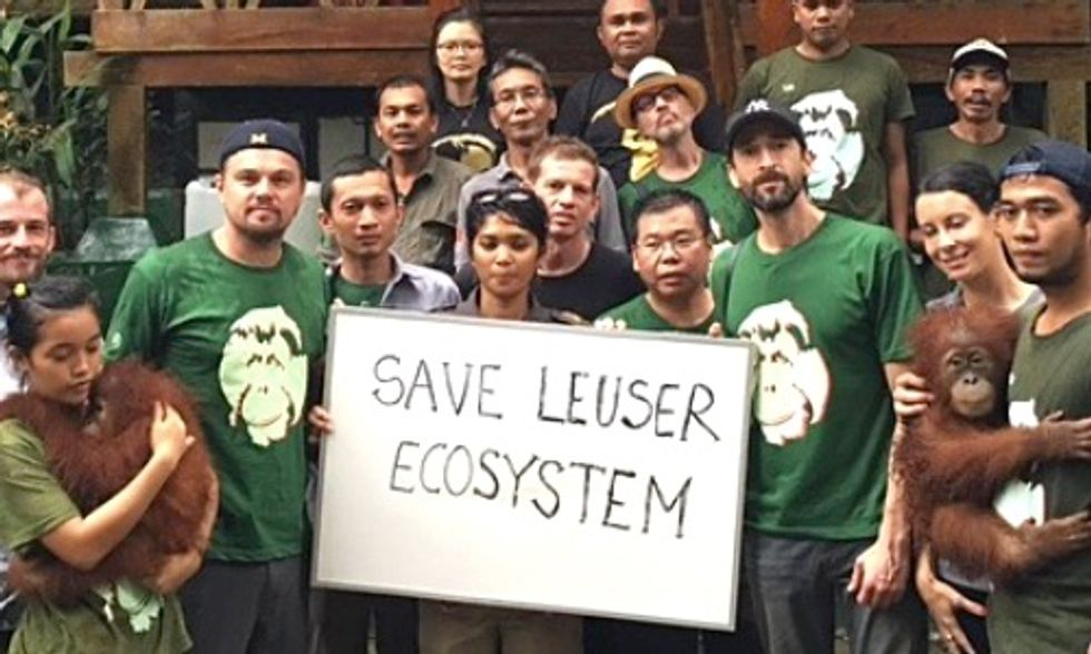 Leonardo DiCaprio Faces Deportation Threat After Criticizing Indonesia's Palm Oil Industry