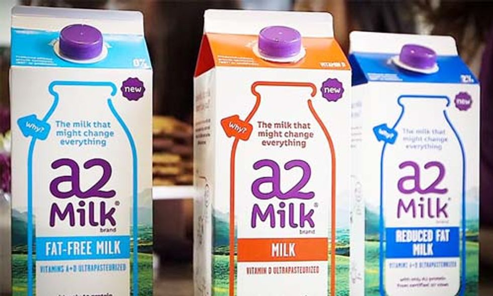 This New Milk Featuring an Old Protein Promises Big Health Benefits