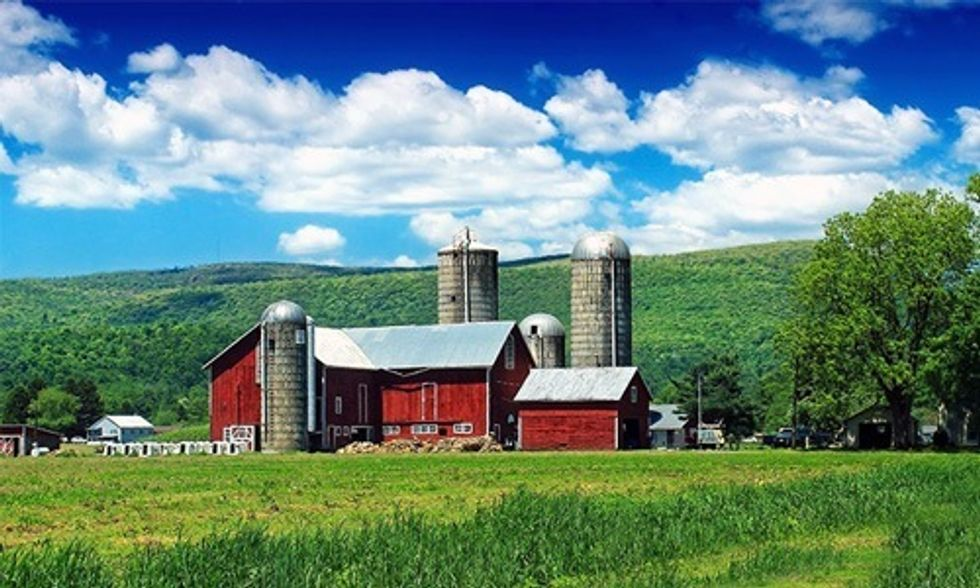 Trace Your Food Back to the Farm With RealTimeFarms.com