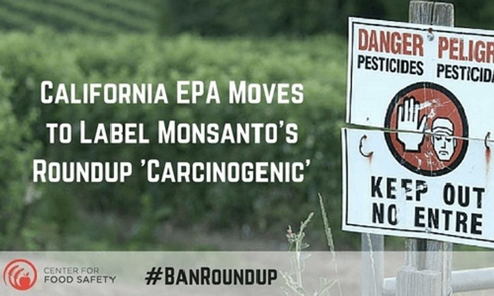 California Becomes First State to Label Monsanto's Roundup as a Carcinogen