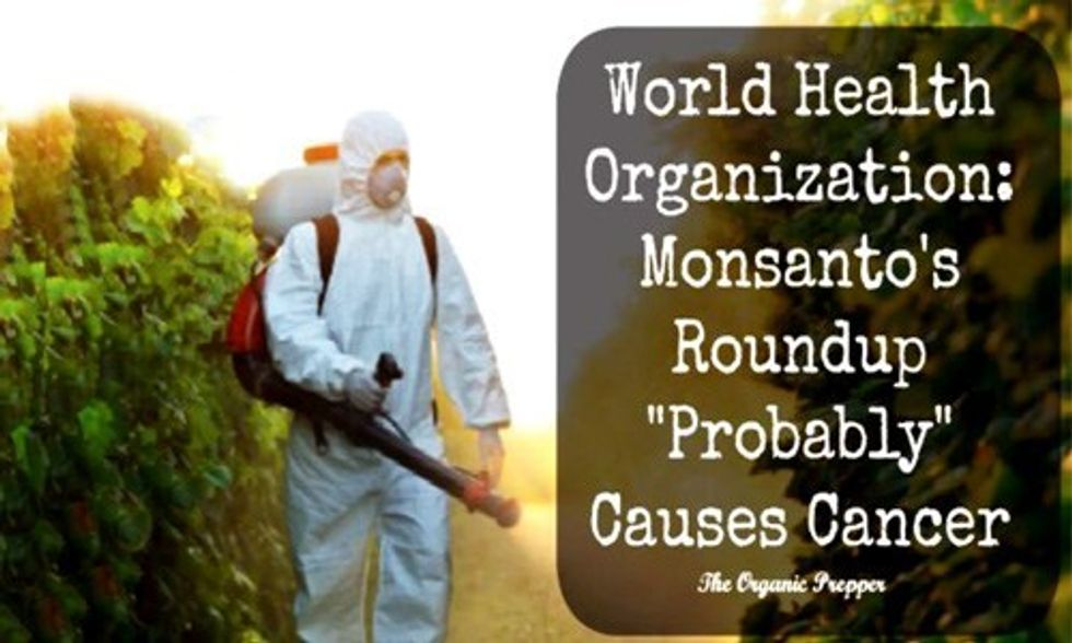 Glyphosate in Monsanto's Roundup Is Linked to Cancer, But Big Ag Wants it in Your Food Anyway
