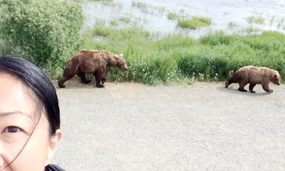 #BearSelfies Force Colorado Park to Close