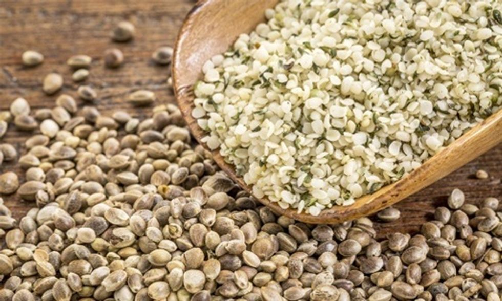 6 Reasons Why You Should Eat Hemp Seeds