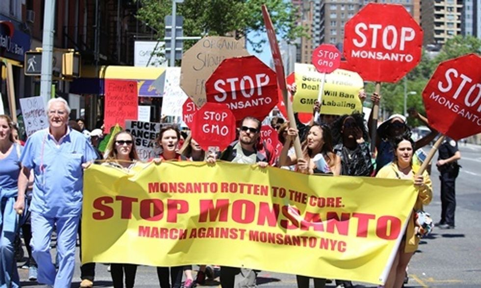 5 Next Steps in the War Against Monsanto and Big Food