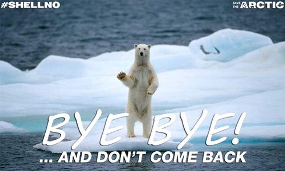 13 Best Tweets Celebrating Shell Abandoning Arctic Drilling