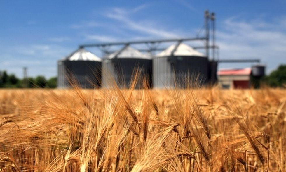Big Business' Role in Creating a Sustainable Food Supply