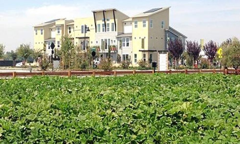 4 Innovative Urban Farms Changing the American Landscape