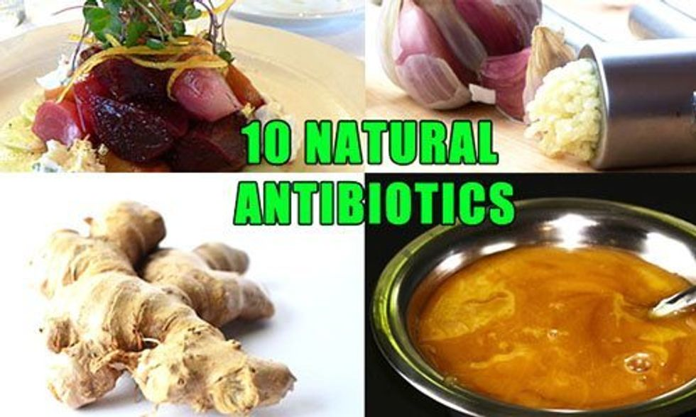 David Wolfe: 10 Natural Antibiotics That Fight Infection