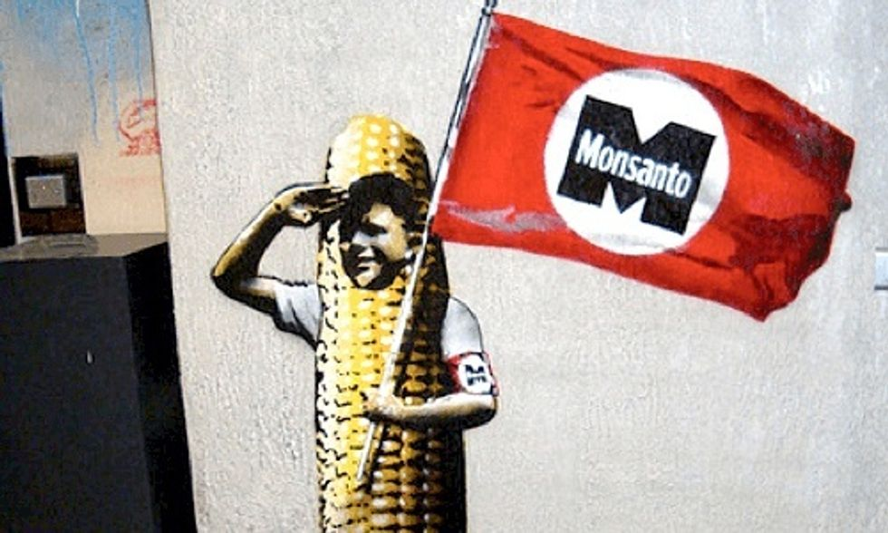 Europe GMO Debate Not Over: EU Votes to Allow GMO Imports Despite Opposition