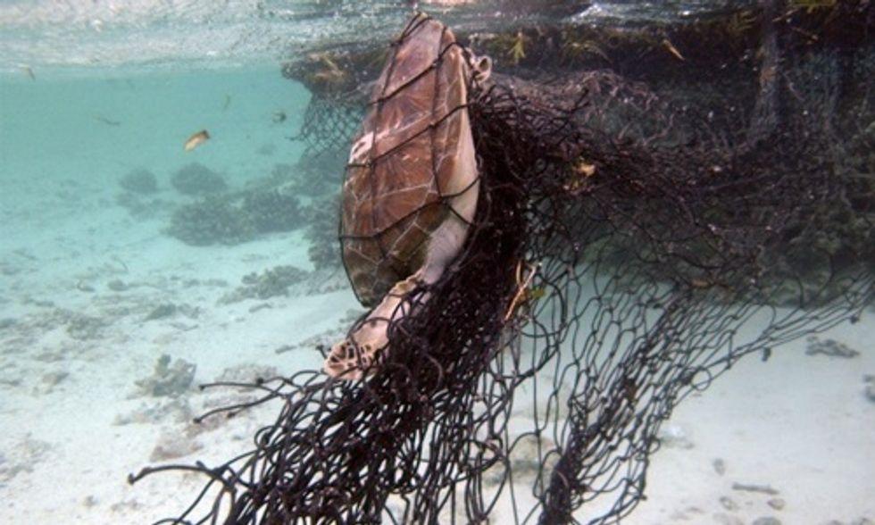 Scuba Divers' Haunting Photos Show Devastating Impact of Ocean Trash on Marine Life
