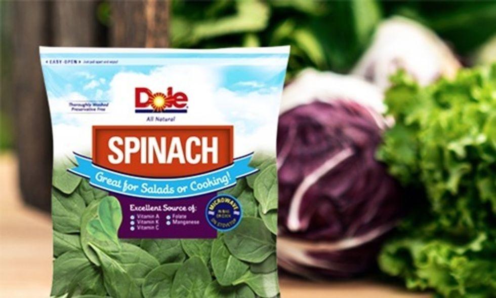 Salmonella Contamination Prompts Major Spinach Recall