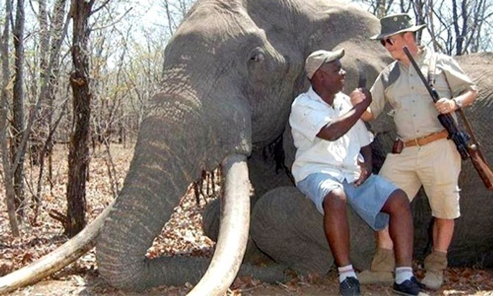 German Hunter Pays $60,000 to Kill One of Africa's Biggest Elephants