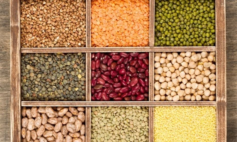 50 Powerful Sources of Plant-Based Protein