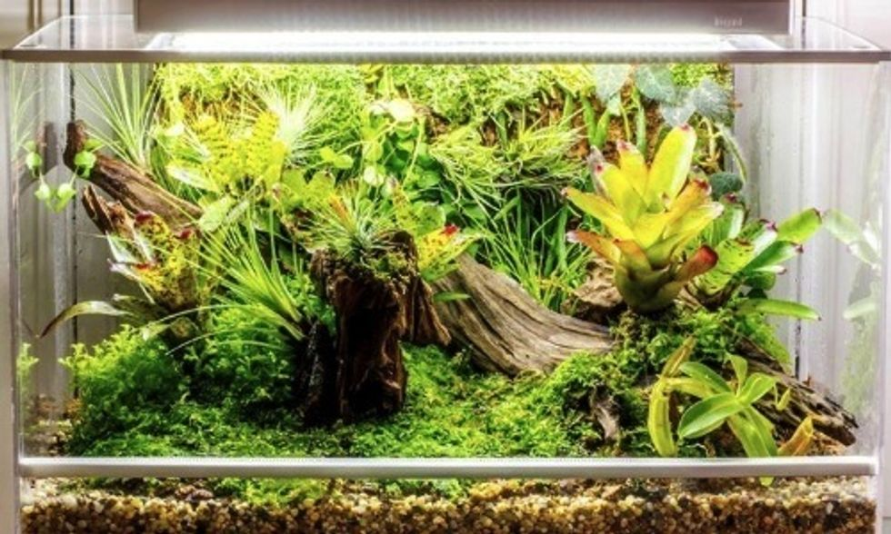 World's First Smart Microhabitat Grows Just About Anything