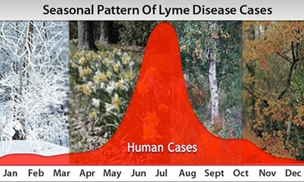Dr. Mark Hyman: 7 Ways to Tackle Lyme Disease