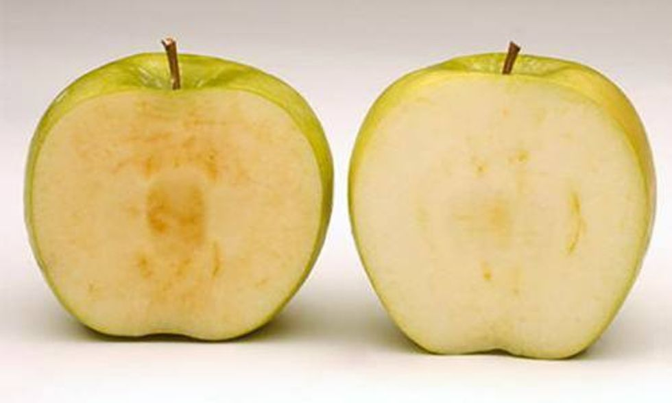 3 Companies Say 'No' to GMO Arctic Apples
