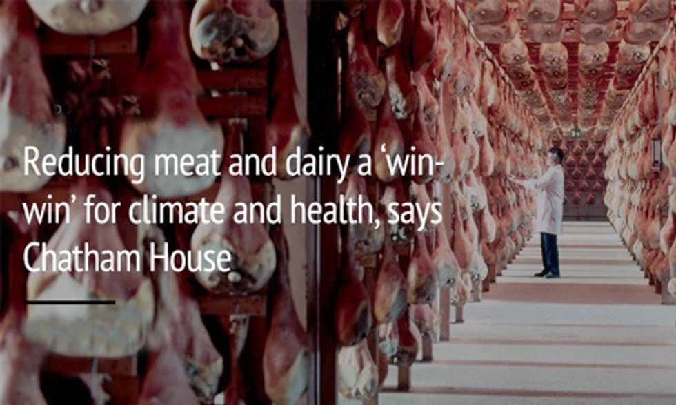 Reducing Meat and Dairy a 'Win-Win' for the Climate and Your Waistline