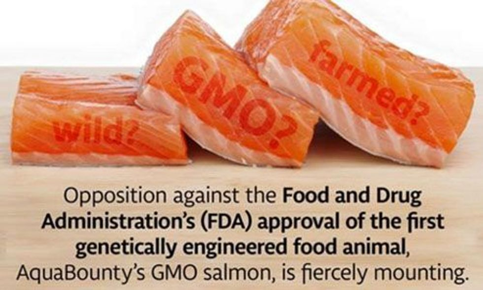 Costco and Red Lobster Say No to GMO Salmon