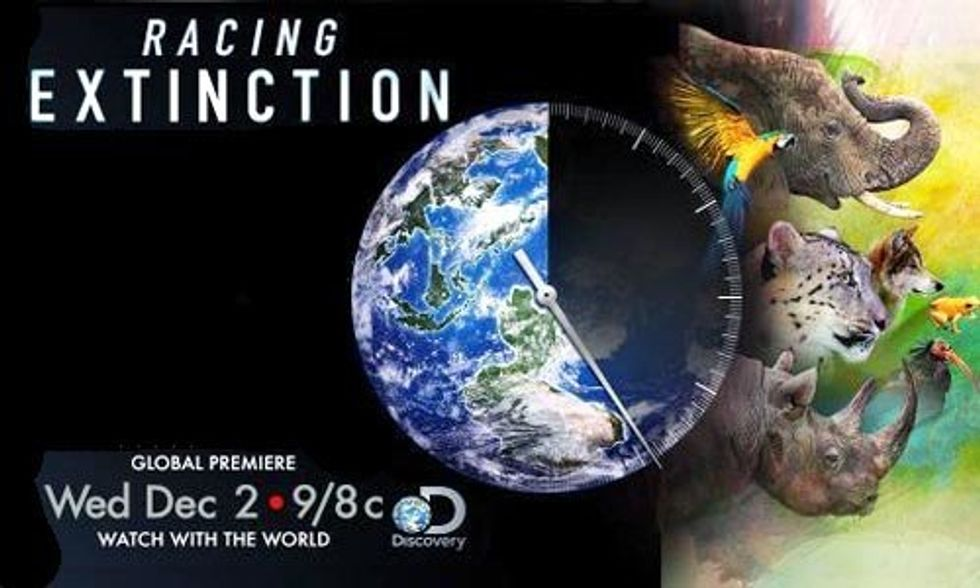 Watch the Film of the Year: Racing Extinction