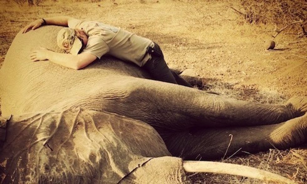 Prince Harry's Moving Photos From Africa Trip Show Brutal Reality of Poaching