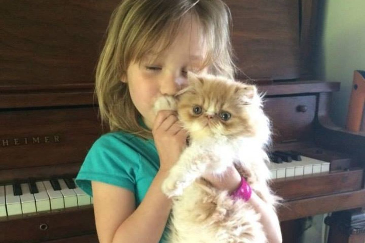 Girl's Love for Her Special Needs Cat Has Sealed the Hole in His Heart