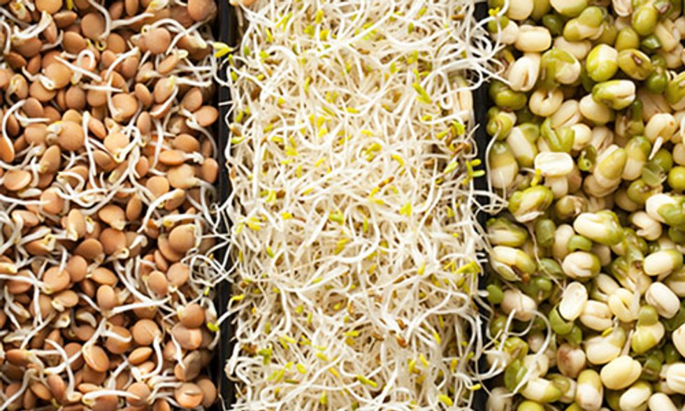 10 Reasons Eating Sprouts Should Be a Part of Your Daily Diet