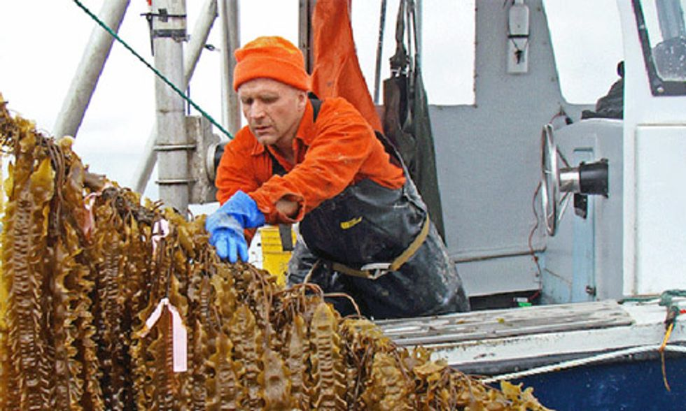 How an Army of Ocean Farmers Is Starting an Economic Revolution