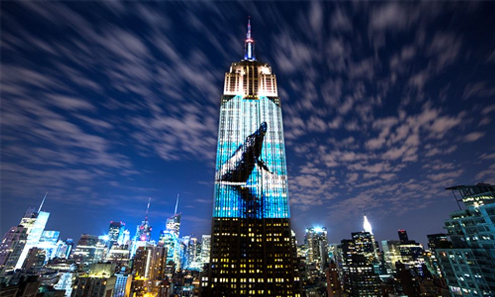 Watch Racing Extinction: It Will Change the Way You View the World