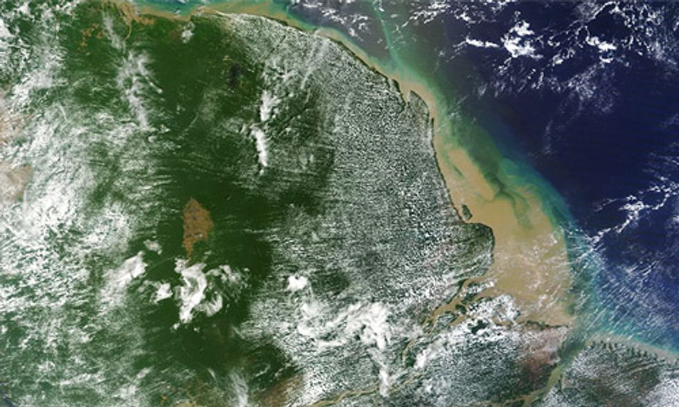 Massive Coral Reef Discovered at Mouth of Amazon, But It's Already Threatened by Oil Drilling