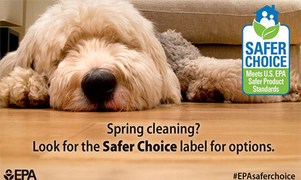 Do Your Household Cleaners Have the EPA's Safer Choice Label?