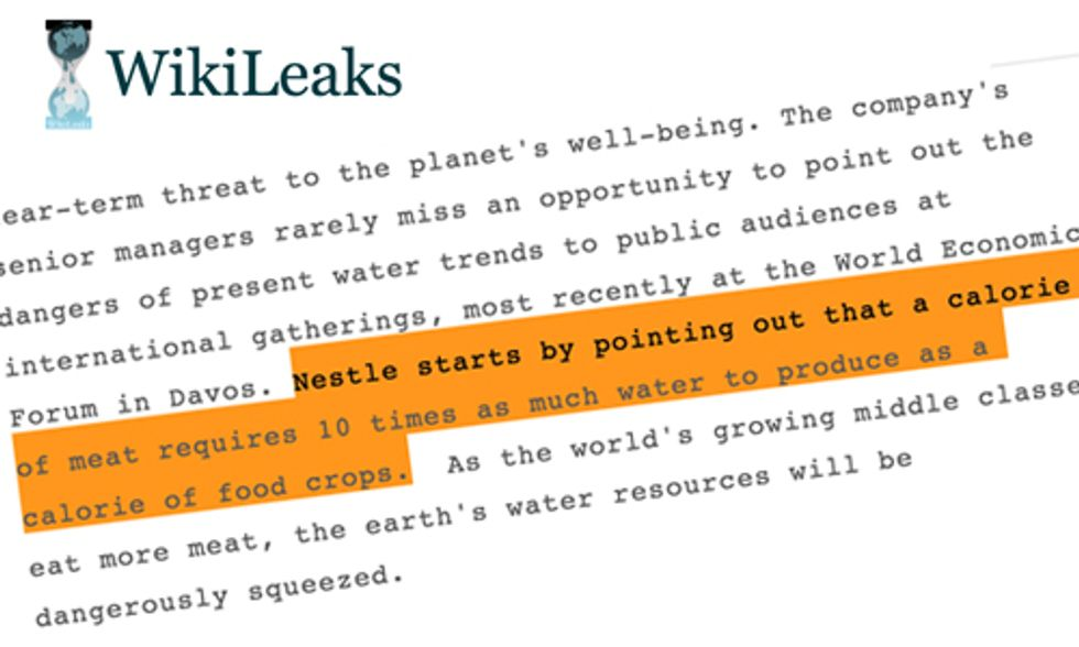 8 Takeaways From Nestle's Secret Report Warning the World Is Running Out of Water
